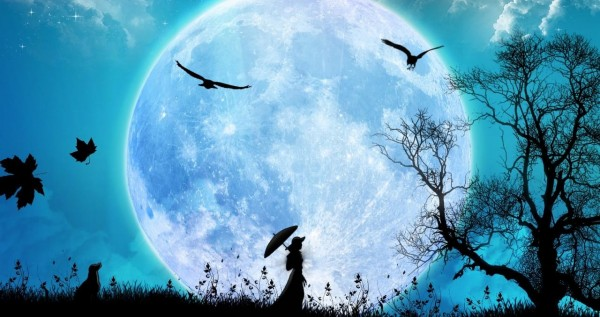 Вночь на22мая случится цветочное полнолуние— Московский Планетарий