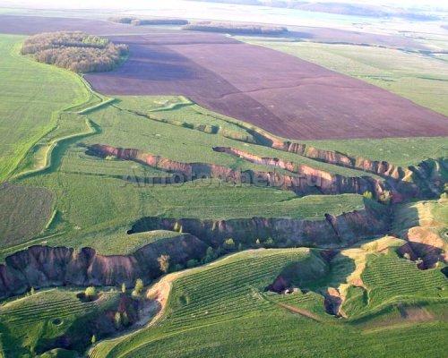 Экологи оценили скорость разрушения почвы в РФ