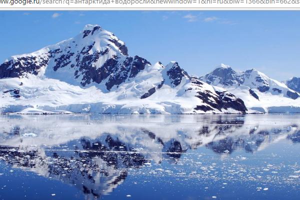Крупнейший антарктический ледник начал таять
