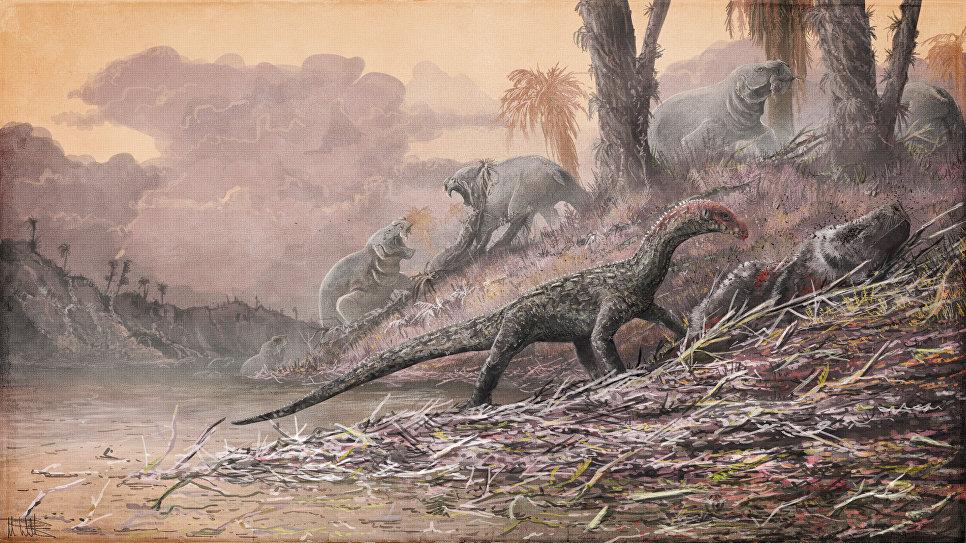 Крокодилы и динозавры имели общих предков