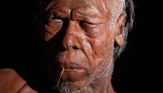 В Марокко найдены древнейшие останки Homo sapiens