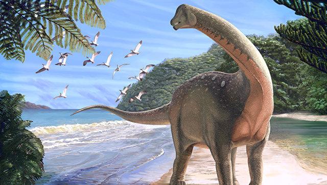 В пустыне Сахара палеонтологи обнаружили останки ранее неизвестного науке динозавра