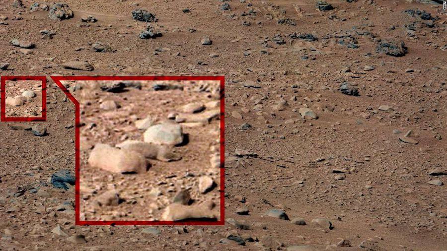 На Марсе найдена жизнь