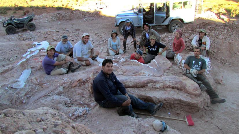 В Аргентине найдены останки первого гигантского динозавра