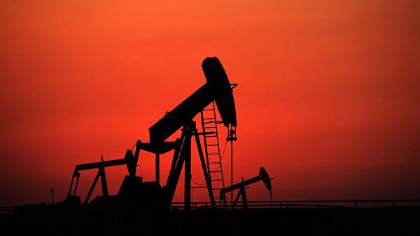 Цены на нефть начали снова расти