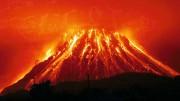 Мировая катастрофа в ближайшие 5 лет станет причиной гибели 750 млн землян