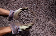 Цены на железную руду могут снизиться до  $40 за тонну