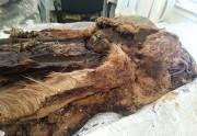 Археологи ищут новые мумии в районе Салехарда