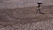 Индия начинает программу по защите от аномальной жары