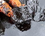 ЛУКОЙЛ обнаружил нефтяное месторождение в Пермском крае