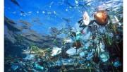 В 2050 году пластика в океане будет больше, чем рыбы