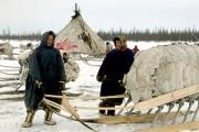 Ученые изучают влияние арктического климата на гены человека