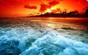 Морские бактерии могут изменить земной климат