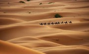 Почему Сахара стала пустыней