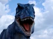 В Аргентине найдены яйца динозавров с сохранившимися эмбрионами