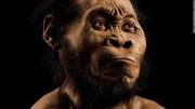 В ЮАР ученые нашли кладбище таинственных Homo Naledi
