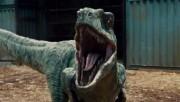 Почему появились динозавры