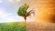 Климатологи рассказали, какая температура на Земле будет в 22 столетии