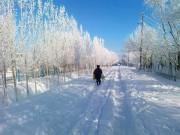 Названа причина аномальных холодов в Москве