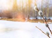 Пасхальные праздники обещают быть теплыми