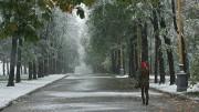 Бабье лето подходит к концу – в Россию идут холода