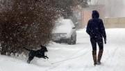 На выходные москвичей засыплет снегом