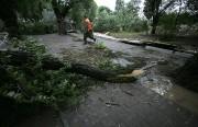 9 мая из-за сильного ветра в Москве пострадали люди